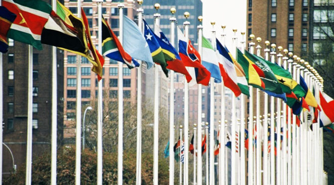 UN Members Flags Bright