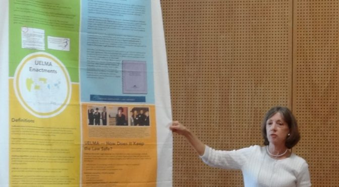 Sally Holterhoff poster presentation for IFLA